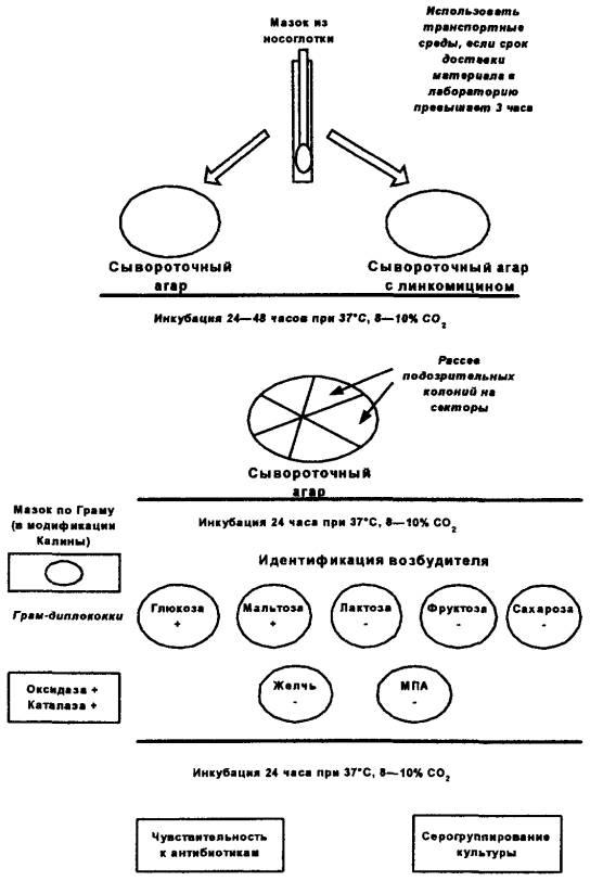 бактериальных менингитов