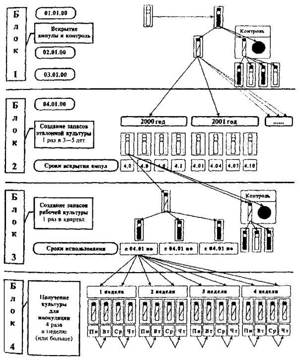Инструкция 1988 года по бактериологическим или микробиологическим исследованиям