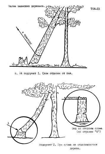Инструкция По Охране Труда Вальщика Леса